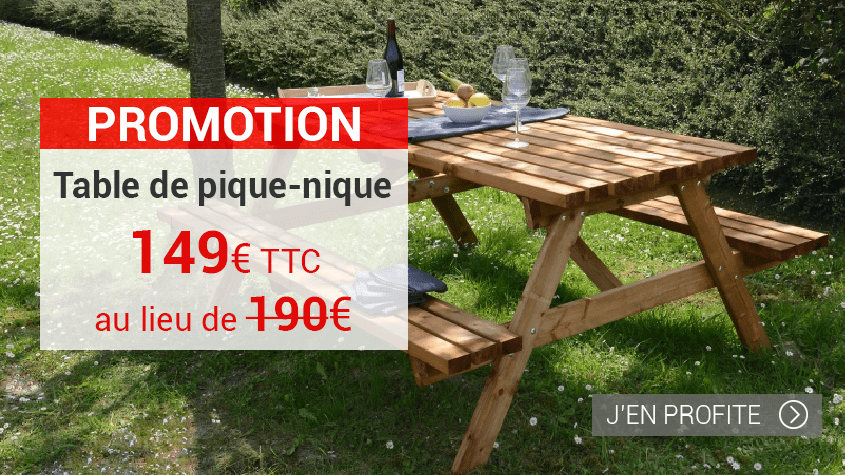 PROMO TABLE DE PIQUE NIQUE